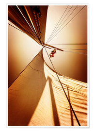 Poster Premium  Sail in the wind I