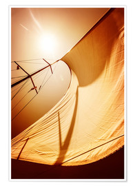 Poster Premium Sail in the wind II