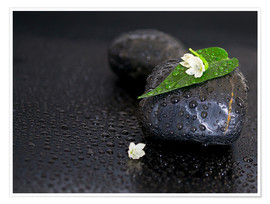 Poster Premium  Black stones with leaf