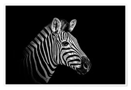 Poster  Zebra - close up