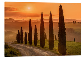Vetro acrilico  Golden Morning - Tuscany - Achim Thomae
