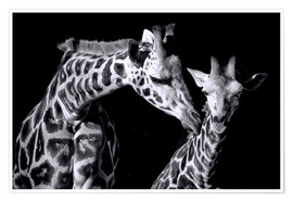 Poster Premium  Mother and child giraffe - Sabine Wagner