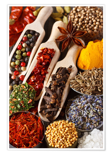Poster Colorful aromatic spices and herbs