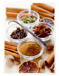 Poster  Christmas spices