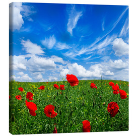Stampa su tela  Red poppies on green field