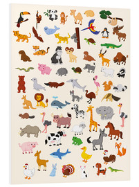 Forex  Animal World - Kidz Collection