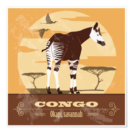 Poster Premium  Congo - Okapi - Kidz Collection