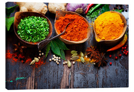 Tela  Colorful spices diversity