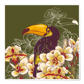 Toucan olive