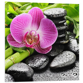 Forex  Zen stones and pink orchid