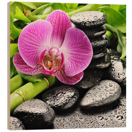 Legno  Zen stones and pink orchid