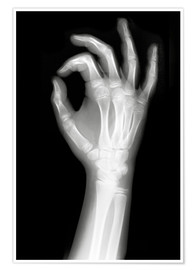 Poster Premium  X rayed OK sign