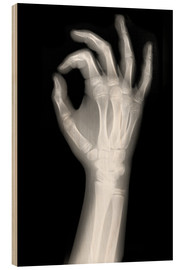 Legno  X rayed OK sign