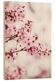 Stampa su legno  flowering fruit tree