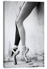 Tela  Ballet in black and white