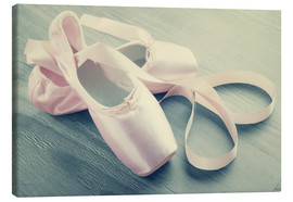 Tela  Ballet Shoes