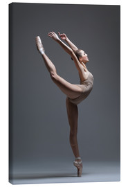 Tela  young beautiful dancer