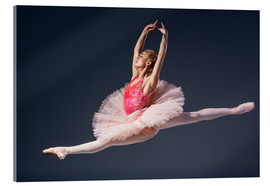Vetro acrilico  pink tutu and pointe shoes