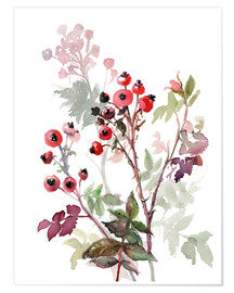 Poster  Bacche di rosa canina - Verbrugge Watercolor