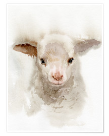 Poster  Lamb Watercolor - Verbrugge Watercolor