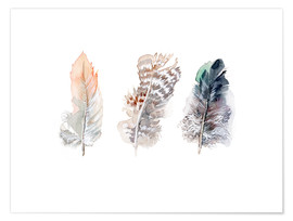Verbrugge Watercolor - 3 feathers