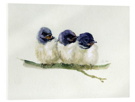 Vetro acrilico  3 little swallows - Verbrugge Watercolor