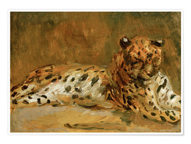 Poster Premium Reclining African Leopard