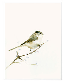 Poster  Long-tailed tit - Dearpumpernickel