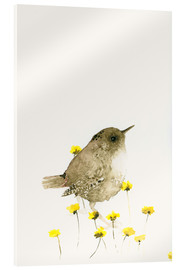 Vetro acrilico  Wren and yellow flowers - Dearpumpernickel