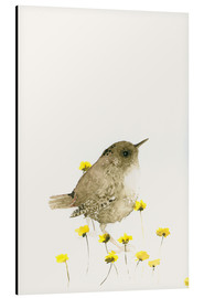 Alluminio Dibond  Wren and yellow flowers - Dearpumpernickel