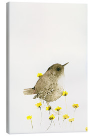 Stampa su tela  Wren and yellow flowers - Dearpumpernickel