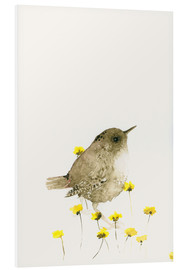 Stampa su schiuma dura  Wren and yellow flowers - Dearpumpernickel