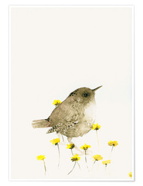 Poster  Wren and yellow flowers - Dearpumpernickel