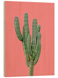 Stampa su legno  Cactus in rosa - Finlay and Noa