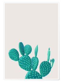 Poster  Cactus turchese - Finlay and Noa