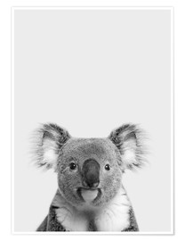 Poster  Soffice koala - Finlay and Noa