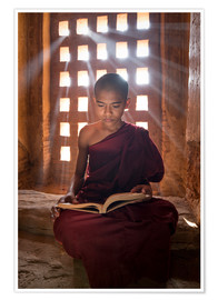 Poster Premium  Young Burmese monk in meditation at the monastery - Jan Christopher Becke