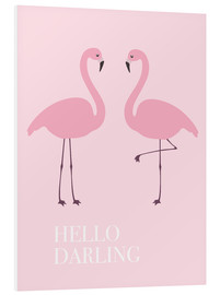 Forex  Hello Darling Flamingo - Finlay and Noa