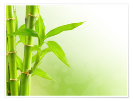 Poster  green bamboo
