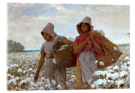 Stampa su vetro acrilico  The Cotton Pickers - Winslow Homer