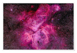 Poster Premium The Carina Nebula in the southern sky