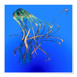 Poster Premium  Teal jellyfish illustration. - Corey Ford