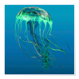 Poster Premium Green jellyfish illustration.