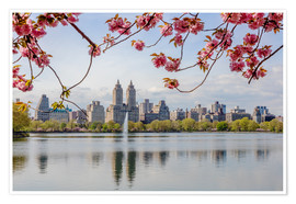 Poster Premium  Buildings reflected in lake with cherry flowers in spring, Central Park, New York, USA - Matteo Colombo