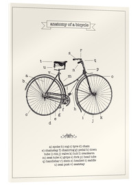 Vetro acrilico  Vintage parts of a Bicycle anatomy - Nory Glory Prints