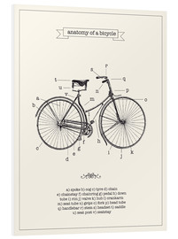 Forex  Vintage parts of a Bicycle anatomy - Nory Glory Prints