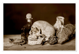 Poster Premium  Still Life - skull, ancient book, dry rose and candle