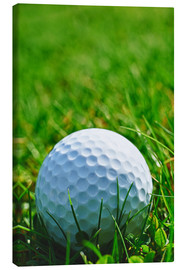 Stampa su tela  Golf ball in the grass