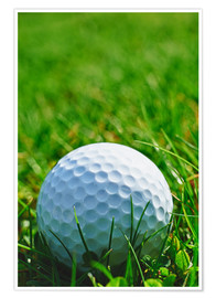 Poster Premium  Golf ball in the grass