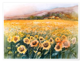 Poster Premium  Sunflower field in the Luberon, Provence - Eckard Funck
